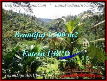 Affordable PROPERTY LAND FOR SALE IN UBUD TJUB503