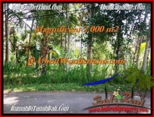 FOR SALE 2,000 m2 LAND IN UBUD TJUB506
