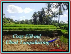 Exotic 570 m2 LAND IN UBUD BALI FOR SALE TJUB511