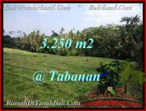 Magnificent PROPERTY 3,250 m2 LAND FOR SALE IN Tabanan Selemadeg TJTB208