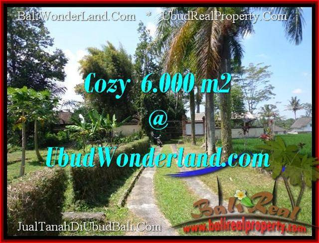 Exotic PROPERTY LAND IN UBUD FOR SALE TJUB507