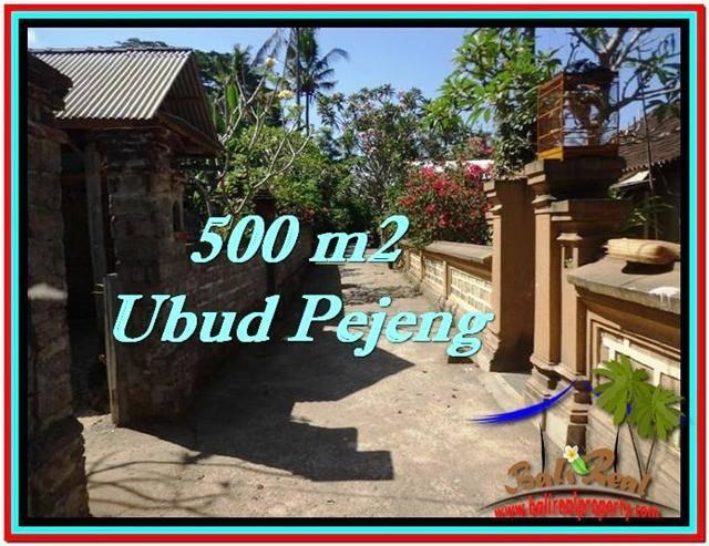 Magnificent PROPERTY 500 m2 LAND IN Ubud Pejeng FOR SALE TJUB515