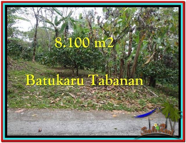 Affordable 8.100 m2 LAND FOR SALE IN TABANAN BALI TJTB212