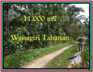 Affordable PROPERTY LAND FOR SALE IN TABANAN TJTB213