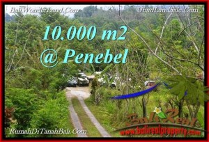 Beautiful 10,000 m2 LAND SALE IN  TABANAN BALI TJTB214