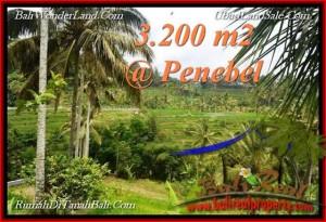 Exotic PROPERTY 3,200 m2 LAND FOR SALE IN Tabanan Jatiluwih TJTB216
