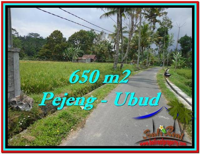 FOR SALE Beautiful PROPERTY LAND IN UBUD TJUB522