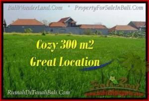 Magnificent LAND SALE IN Canggu Brawa TJCG186