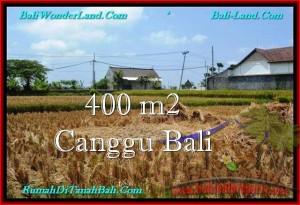 Affordable PROPERTY LAND FOR SALE IN Canggu Pererenan BALI TJCG188