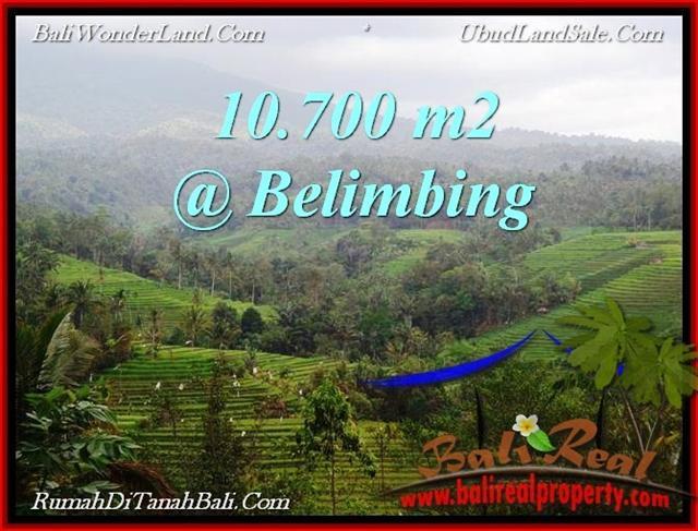 Tabanan Selemadeg BALI LAND FOR SALE TJTB219