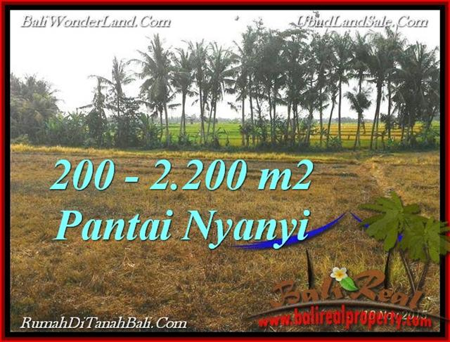 FOR SALE Exotic LAND IN Tabanan Tanah Lot BALI TJTB224
