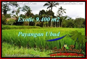 Magnificent 9,400 m2 LAND SALE IN UBUD BALI TJUB526