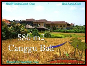 Magnificent PROPERTY 580 m2 LAND FOR SALE IN CANGGU BALI TJCG197