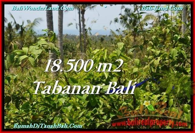 FOR SALE Exotic LAND IN Tabanan Selemadeg BALI TJTB232