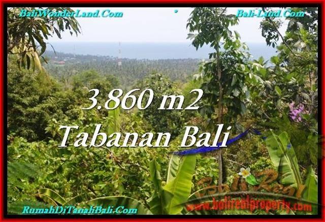 Beautiful 3,860 m2 LAND SALE IN TABANAN BALI TJTB236