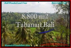 Beautiful 8,800 m2 LAND SALE IN TABANAN BALI TJTB238