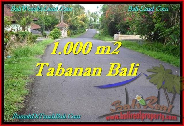 Affordable Tabanan Selemadeg BALI LAND FOR SALE TJTB243