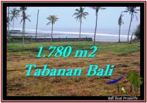 Magnificent PROPERTY 1,780 m2 LAND IN Tabanan Selemadeg FOR SALE TJTB249