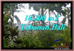 Beautiful LAND FOR SALE IN TABANAN TJTB254