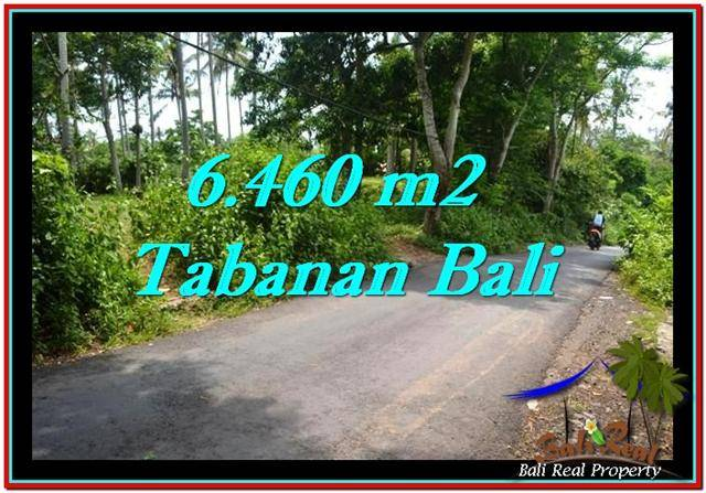Beautiful 6,460 m2 LAND SALE IN TABANAN BALI TJTB256