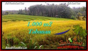 Beautiful PROPERTY LAND SALE IN TABANAN TJTB273