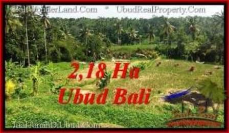 Exotic PROPERTY Sentral Ubud 21,800 m2 LAND FOR SALE TJUB546