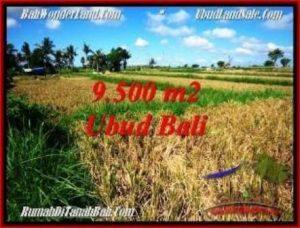 Magnificent PROPERTY 9,500 m2 LAND IN Sentral Ubud BALI FOR SALE TJUB548