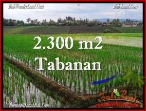 Magnificent PROPERTY TABANAN LAND FOR SALE TJTB263