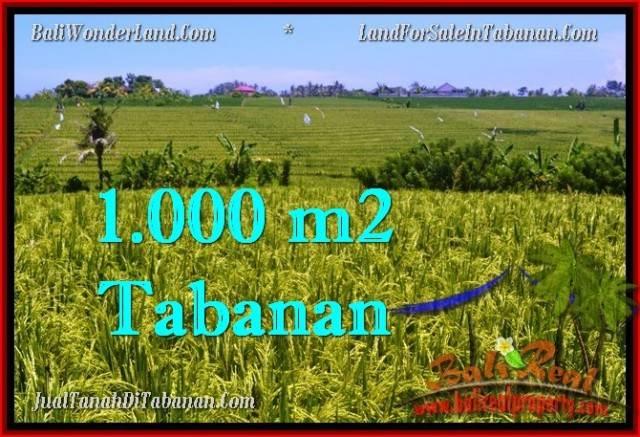 FOR SALE 1,000 m2 LAND IN TABANAN TJTB266