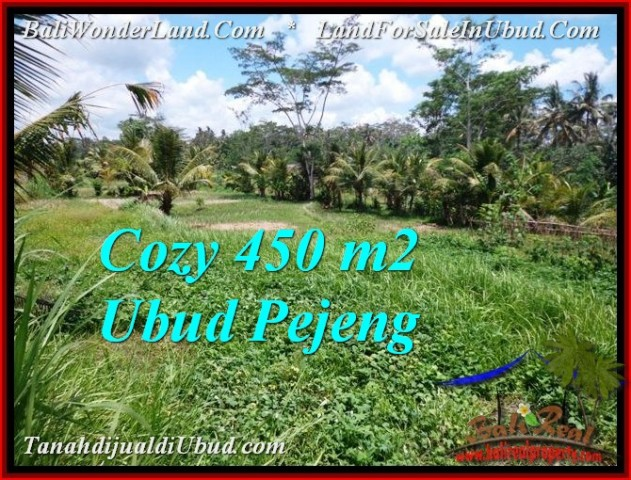 450 m2 LAND FOR SALE IN UBUD BALI TJUB535