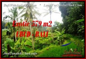 FOR SALE Exotic LAND IN Ubud Tegalalang BALI TJUB538