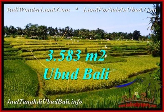FOR SALE Exotic 3,583 m2 LAND IN UBUD BALI TJUB542