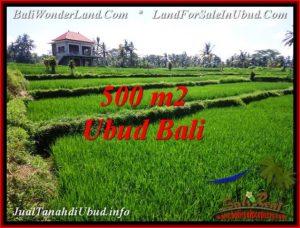 Beautiful LAND IN UBUD FOR SALE TJUB543
