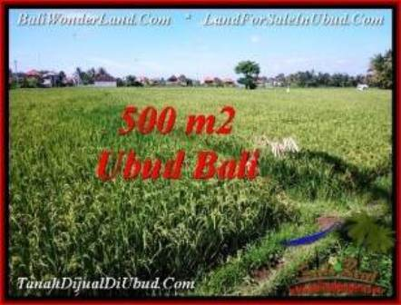 Exotic PROPERTY UBUD LAND FOR SALE TJUB545