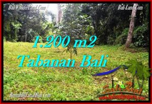 Exotic LAND SALE IN Tabanan Penebel BALI TJTB278