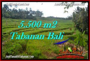 Affordable PROPERTY LAND IN TABANAN FOR SALE TJTB280