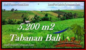 Affordable LAND SALE IN Tabanan Selemadeg BALI TJTB281