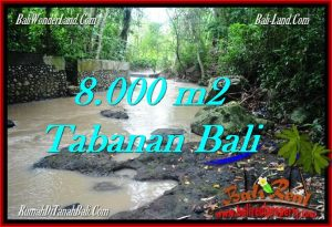 8,000 m2 LAND FOR SALE IN TABANAN BALI TJTB287