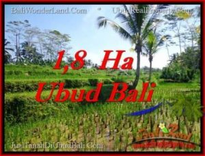 Affordable UBUD BALI 16,000 m2 LAND FOR SALE TJUB553