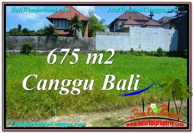 Affordable PROPERTY 675 m2 LAND FOR SALE IN CANGGU BALI TJCG200