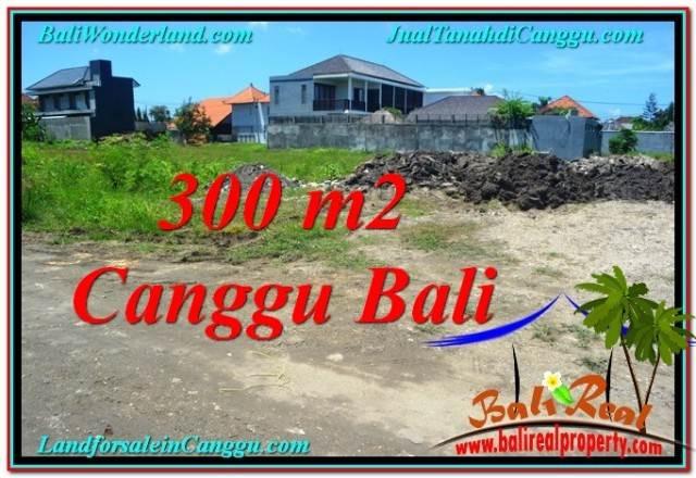 FOR SALE Magnificent PROPERTY LAND IN Canggu Brawa BALI TJCG203