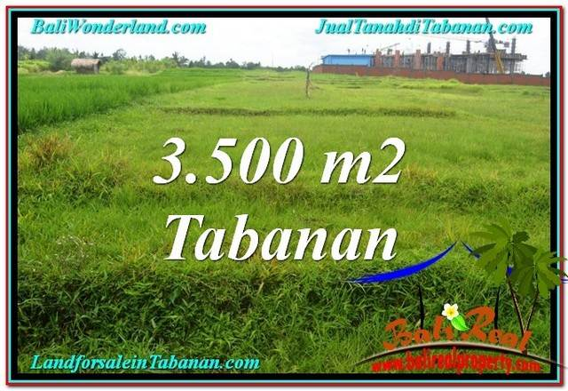 Exotic PROPERTY TABANAN 3,500 m2 LAND FOR SALE TJTB302