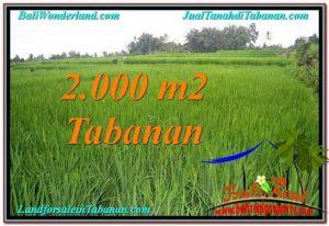 Magnificent PROPERTY 2,000 m2 LAND FOR SALE IN Tabanan Penebel TJTB303