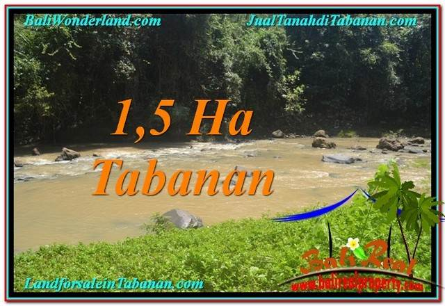Beautiful PROPERTY 15,000 m2 LAND IN Tabanan Selemadeg FOR SALE TJTB304