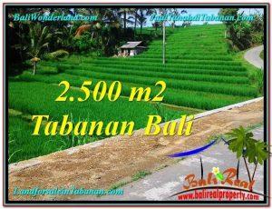 LAND IN Tabanan Penebel BALI FOR SALE TJTB305