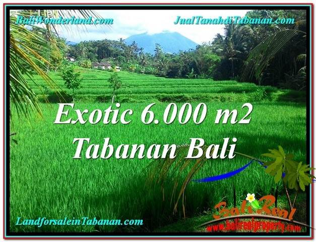 Magnificent PROPERTY 6,000 m2 LAND SALE IN TABANAN TJTB306