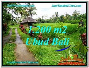 Exotic UBUD BALI 1,200 m2 LAND FOR SALE TJUB559