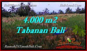 Exotic 4,000 m2 LAND FOR SALE IN TABANAN BALI TJTB288