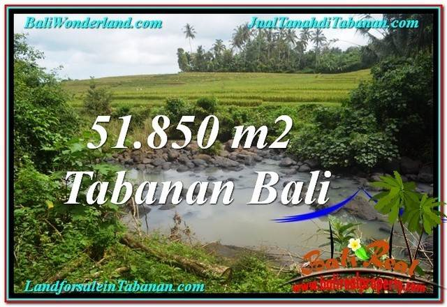 Magnificent 51,850 m2 LAND IN TABANAN BALI FOR SALE TJTB289