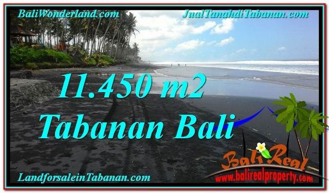 Affordable PROPERTY 11,450 m2 LAND SALE IN TABANAN BALI TJTB291